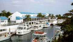 Suites at Key Largo by Key West Inn - Hotel - 201 Ocean Dr, Key Largo, FL, United States