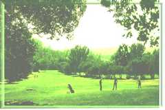Bidwell Park Golf Club - golf clubs - 3199 Golf Course Road, Chico, CA, United States