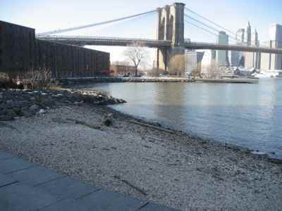 Pebble Beach, Brooklyn Bridge Park - Ceremony Sites - Main St, Brooklyn, NY, 11201