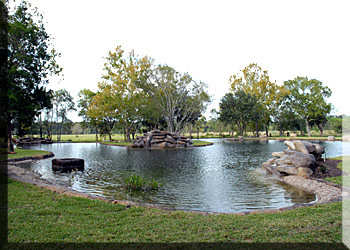 Lindsay Lakes - Ceremony & Reception, Ceremony Sites, Reception Sites - 16536 Mueschke Rd, Cypress, TX, 77433
