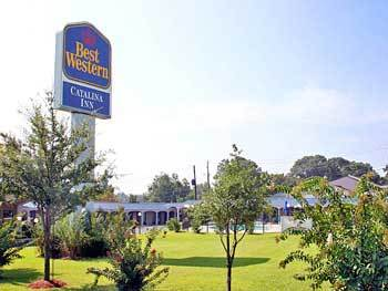 Bestwestern Catalina Inn - Hotels/Accommodations - 2015 MCFARLAND BLVD, NORTHPORT, AL, United States