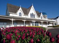 Angus Glen Golf Club - Ceremony Sites - 10080 Kennedy Rd, Markham, ON, L6C 1N9