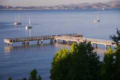Paradise Beach Picnic - Picnic - 3450 Paradise Drive, Belvedere-Tiburon, CA, United States