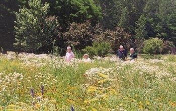 193592 L Save. 193592 L Omaha Botanical Gardens ...