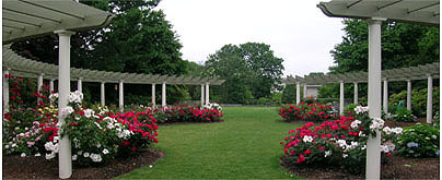 Wedding Ceremony - Ceremony Sites - 3 E Alumni Ave, Kingston, RI, 02881