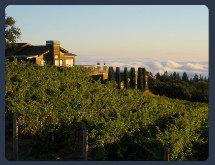 Thomas Fogarty Winery & Vineyards - Ceremony Sites, Reception Sites, Attractions/Entertainment - 19501 Skyline Blvd, Woodside, CA, 94062, United States
