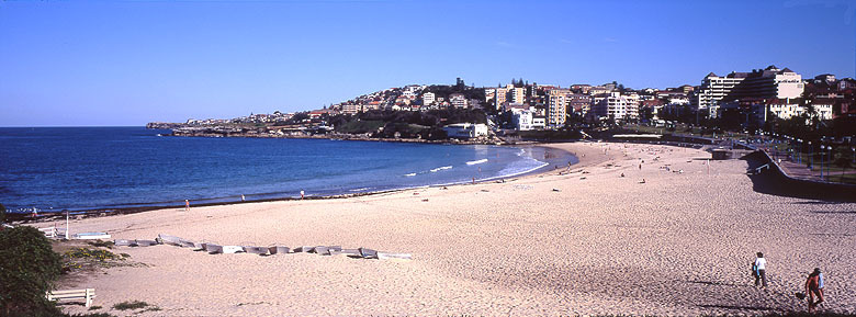 This Is Where We Swim ! Coogee Beach - Attractions/Entertainment - 