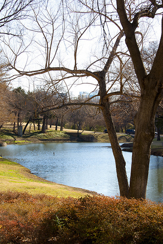Turtle Creek - Parks/Recreation - Turtle Creek Blvd, Dallas, TX, US