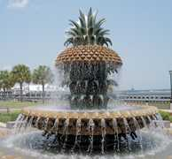 Waterfront Park - Attraction - 34 Prioleau St, Charleston, SC, United States
