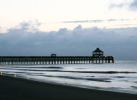 Folly Beach - Attraction - W Arctic Ave, Charleston, SC, 29412, US