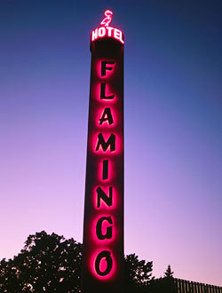 Flamingo Conference Resort & Spa - Hotels/Accommodations, Reception Sites - 2777 4th St, Santa Rosa, CA, United States
