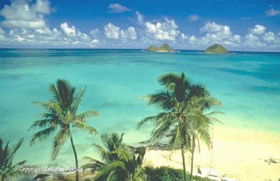Kailua Beach - Beaches, Attractions/Entertainment - Kailua, HI, Kailua, Hawaii, US