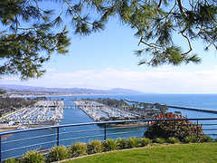 Chart House - Ceremony - 34442 Green Lantern St, Dana Point, CA, United States