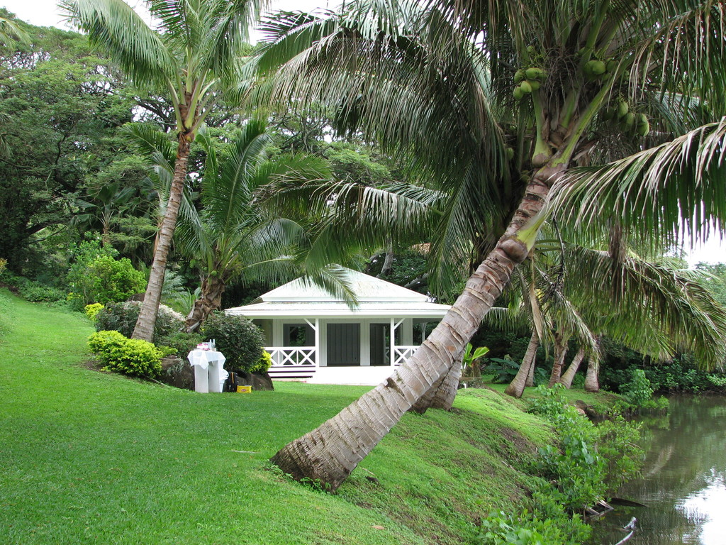 Jason & Vicky's Wedding - Ceremony Sites - 49-345 Kamehameha Highway, Kaneohe, Hawaii, 96744