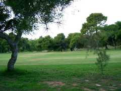 Glyfada Golf Club - Attraction - P.O. Box 70034, Glyfada, Athen, Greece