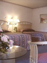 Hotel Option: Dolphin Inn - Hotels/Accommodations - San Carlos St & 4th Ave, Carmel-By-the-Sea, CA, 93923
