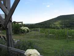 Hillsborough Vineyards - Bridal Shower - 36716 Charles Town Pike, Purcellville, VA, 20132, US