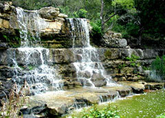 Zilker Botanical Garden - Attractions/Entertainment, Reception Sites, Ceremony Sites - 2220 Barton Springs Rd, Austin, TX, United States