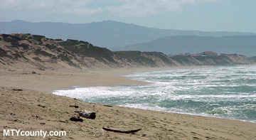 Marina State Beach - Beaches - 61 Reservation Rd, Marina, CA, United States