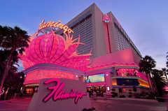 Flamingo Las Vegas - Hotel - 3555 Las Vegas Blvd S, Las Vegas, NV, United States