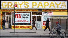 Gray's Papaya - Munchies -
