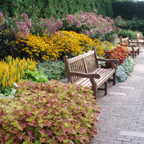 Rotary Botanical Gardens - Reception Sites, Ceremony Sites, Restaurants, Attractions/Entertainment - 1455 Palmer Dr, Janesville, WI, United States