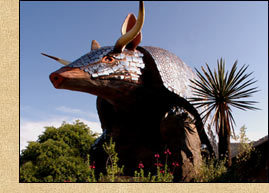 Goode's Armadillo Palace - Attractions/Entertainment, Bars/Nightife - 5015 Kirby Drive, Houston, TX, United States
