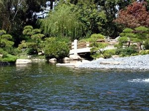 Earl B Miller Japanese Garden - Ceremony Sites, Attractions/Entertainment - 1250 N Bellflower Blvd, Long Beach, CA, 90815