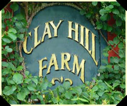 Clay Hill Farm - Reception Sites, Ceremony Sites - 220 Clay Hill Rd, Cape Neddick, ME, 03902, US