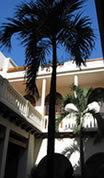 Hotel Quadrifolio - Hotel -