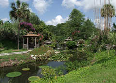 Kanapaha Botanical Gardens - Ceremony - 4700 SW 58th Dr, Gainesville, FL, 32608, United States