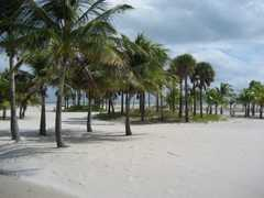 Crandon Park Gardens - Ceremony - 4000 Crandon Blvd, Key Biscayne, FL, 33149, USA