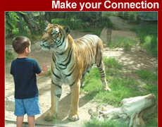 El Paso Zoo - Attraction - 4001 E Paisano Dr, El Paso, TX, 79905, USA