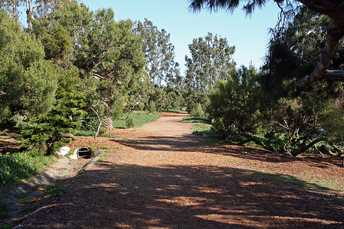 Greenbelt Jogging Path - Spas/Fitness -