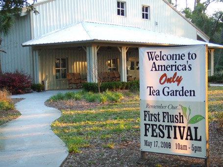 Tea Plantation - Attractions/Entertainment, Ceremony Sites - 6617 Maybank Hwy, Wadmalaw Island, SC, 29487