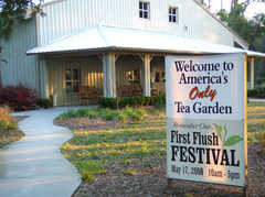 Tea Plantation - Attraction - 6617 Maybank Hwy, Wadmalaw Island, SC, 29487