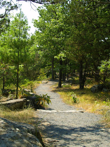 Interstate Park (mn State Park) - Campsites - 307 Milltown Road, Taylors Falls, MN