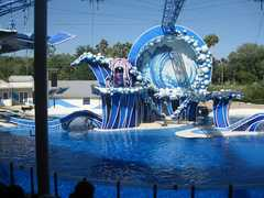 Sea World - Attraction - 7007 Sea World Dr, Orlando, FL, United States