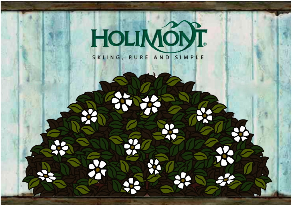 Holimont - Ceremony Sites -