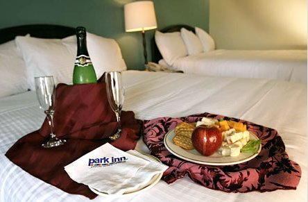 Park Inn Gateway Conference Center - Reception Sites, Hotels/Accommodations - 909 Us 70 SW, Hickory, NC, 28602, US