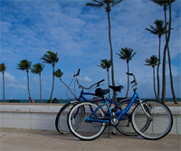Palm Beach Bicycle Trail Shop - Sports - 223 Sunrise Avenue, Palm Beach, FL, United States