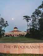 The Woodlands Wedding In February in Spring, TX, USA