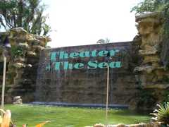 Theater of the Sea - Attraction - 84721 Overseas Highway, Islamorada, FL, United States