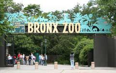 Bronx Zoo - Zoo - 2300 Southern Blvd, Bronx, NY, United States