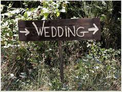 Holland Wedding In July in Holland, MI, USA