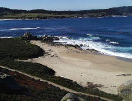 Middle Beach / Ribera Beach - Ceremony Sites, Parks/Recreation - Ribera Rd, Carmel-By-the-Sea, CA, 93923