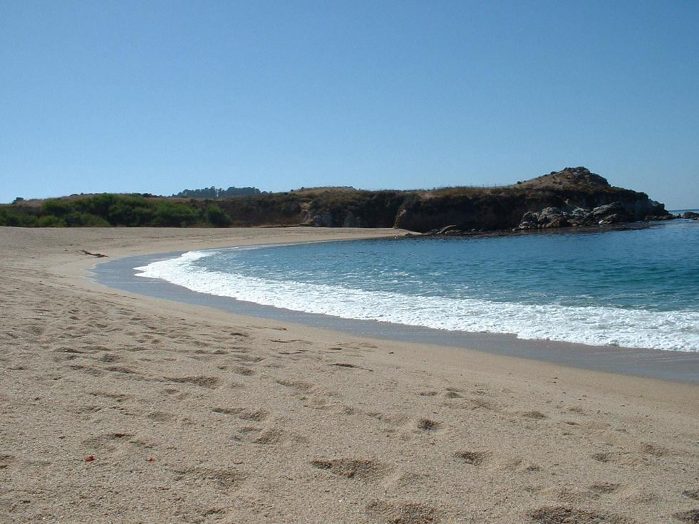 Monastery Beach / San Jose Creek Beach - Parks/Recreation -