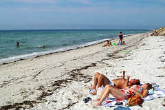 Chapoquoit Beach  - Beaches - 135 Chapoquoit Rd, Falmouth , MA