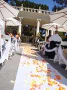 Villa Montalvo - Ceremony - 15400 Montalvo Road, Saratoga, CA, United States