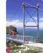 Grandfather Mountain - Attractions/Entertainment, Parks/Recreation -